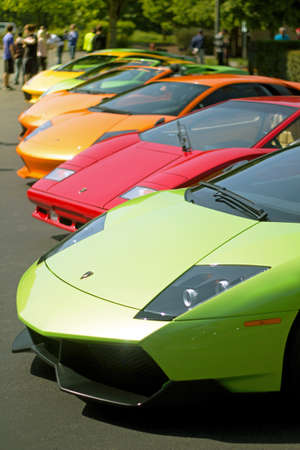 Row of Lamborghinis