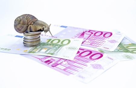 Snail on moneys