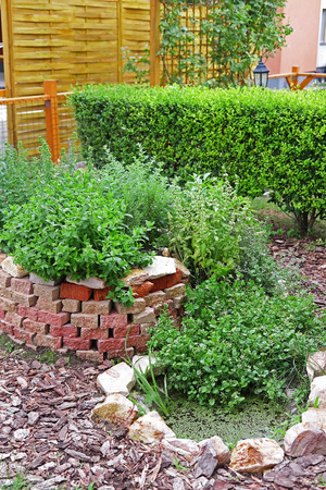 rockery: A spice spiral with rockery pond