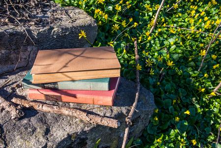 Old fashioned books on a stone stairs. Zdjęcie Seryjne