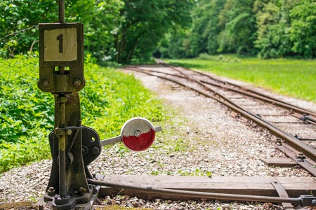 Light railway switch in a sylvan clearing.