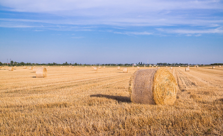 Harvested wheat field with a straw bale.