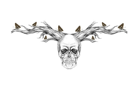 Skull with horns and butterflies flying around them