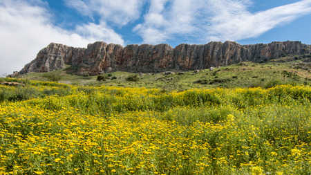View of Arbel cliffs from the Jesus Trail, 700 feet above the Sea of Galilee, Israel