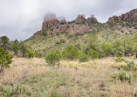 Casa Grande in the mist, on the Pinnacles  Emory Peak Trail in the Chisos Mountains Basin area of Big Bend National Park, Texas. Фото со стока - 42561016