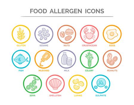 Bunte Lebensmittelsicherheitallergieikonen eingestellt. 14 Lebensmittelzutaten, die in der EU als Allergene ausgewiesen werden müssen. Standard-Bild - 76951825