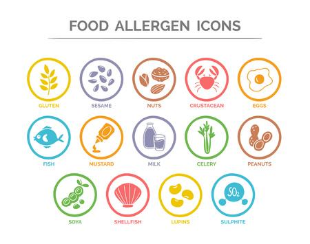 Voedselveiligheidsallergie pictogrammen ingesteld. 14 voedsel ingrediënten die moeten worden aangemerkt als allergenen in de EU. Vector Illustratie