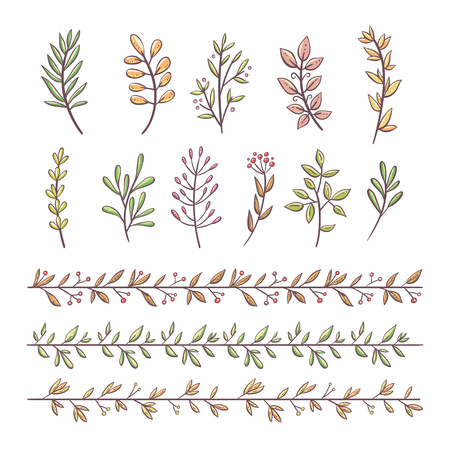 Bundle of branches with leaves and berries. Hand drawn colorful decorative elements isolated on white background. Perfect for invitations, greeting cards, quotes, frames. Floral decorative borders. Vector illustration.