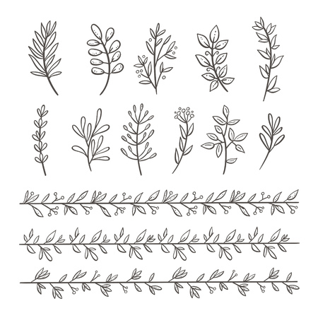 Bundle of branches with leaves and berries. Hand drawn floral decorative elements isolated on white. Perfect for invitations, greeting cards, quotes, frames. Floral borders. Vector illustration.