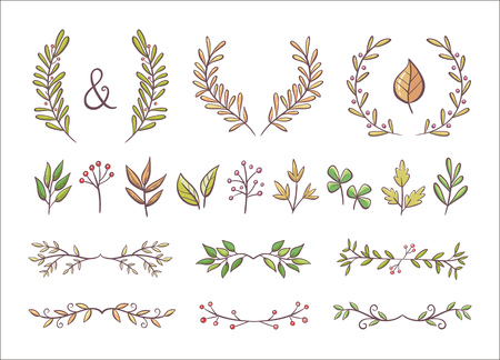 Colorful floral ornaments. Hand drawn wreaths and text dividers made of branches with leaves and berries. Isolated elements. Perfect for invitation cards and page decoration. Vector illustration.