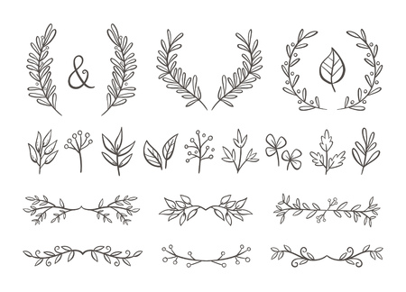 Floral ornament set. Hand drawn wreaths and text dividers made of branches with leaves and berries. Isolated on white background. Perfect for invitation cards and page decoration. Vector illustration. 向量圖像
