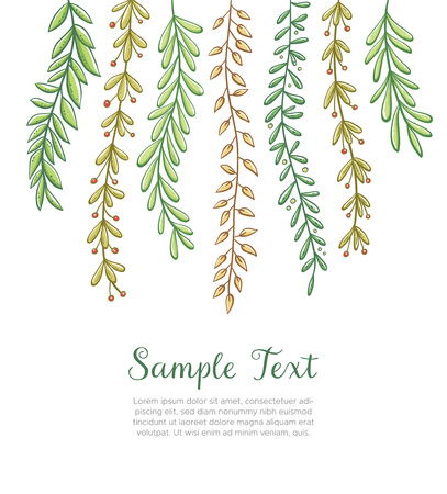 Dangling plants background. Hand drawn floral background. Colorful vector illustration isolated on white background.