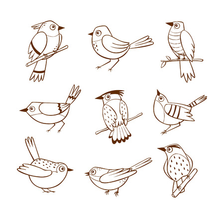 Hand drawn birds in different poses, isolated on white background. Vector illustration. Ilustração