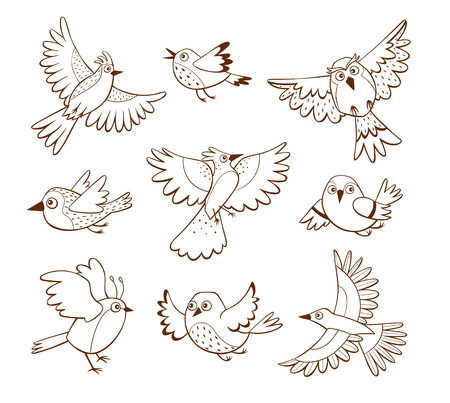 Hand drawn flying birds in different poses, isolated on white background. Vector illustration. Ilustrace