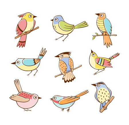 Collection of birds in different poses. Colorful birds isolated on white background. Hand drawn vector illustration. Ilustração