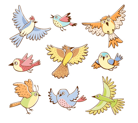 Collection of different birds in flying pose. Colorful birds isolated on white background. Cartoon style. Hand drawn vector illustration.