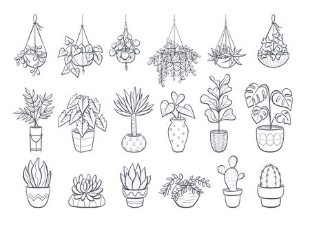Collection of houseplants isolated on white background. Set of decorative indoor and office plants in pot.Vector doodle plants illustration. Set 1 of 2. Vectores