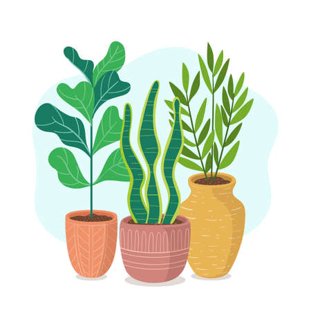 Houseplants with long stem. Cute green plants and pots composition. Vectores