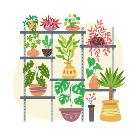 Collection of indoor plants placed on a metal structure with different shelves at various heights.