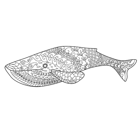 ballena azul: ballena azul doodle estilo zentangl, la coloraci�n de los adultos, el ornamento floral �tnico, Vectores