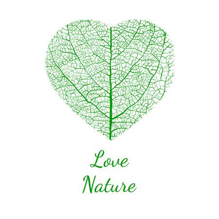 details: love nature, vector Illustration