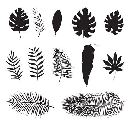 Set van silhouet van tropische blad Stock Illustratie