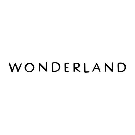 Hand drawn inscription to winter holiday. Calligraphic and typographic design element. Hand drawn Lettering - wonderland
