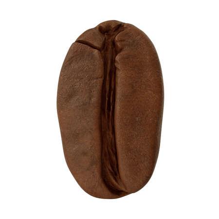 realistic 3d render of coffee bean