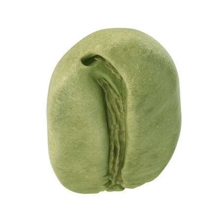 Green coffee bean on white background. 3D illustration Фото со стока