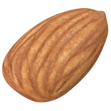 Almond isolated. Almonds on white background. 3d illustration Фото со стока