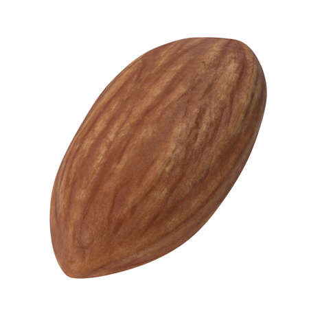 One almond isolated on white background. 3d illustration Фото со стока
