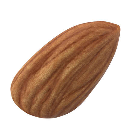 Almond nut isolated on white background. 3d illustration Фото со стока