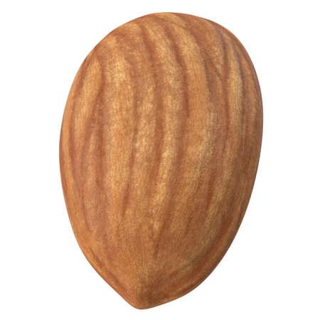 One almond isolated on white background. 3d illustration 版權商用圖片 - 167528184