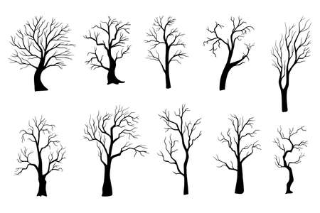 Spooky tree silhouette vector isolated on white. Set of Halloween trees.