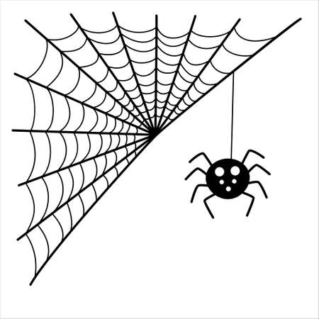 Spider web and spider. Halloween spider web isolated on white background. Vettoriali