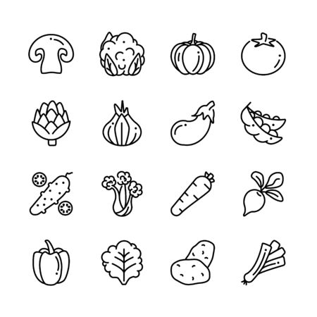 Veggies organic products illustrations. Vegetarian, vegetable contain potatoes, mushrooms, tomato, cabbage outline icons collection.