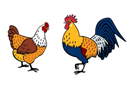 rooster and hen ,side view,standing on white background Vector