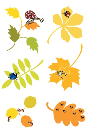 autumn leaves with little forest creature on white background
