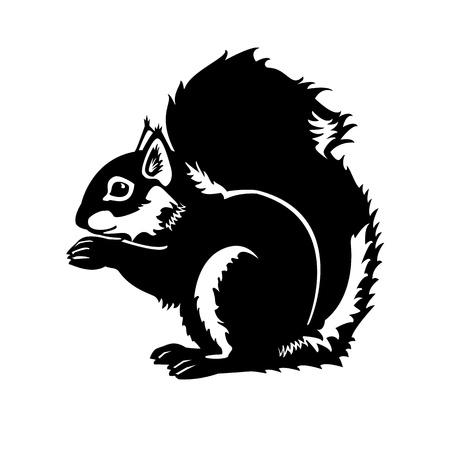 eekhoorn zwart-wit op een witte achtergrond zijaanzicht