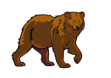 kahverengi: kahverengi, beyaz arka plan üzerinde izole ayı Çizim