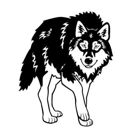 standing wolf black and white isolated on white background Stock Vector - 14641754