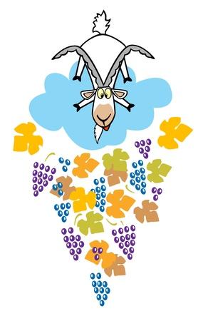 kid goat: cartoon childish goat with grapes children illustration isolated on white background Illustration