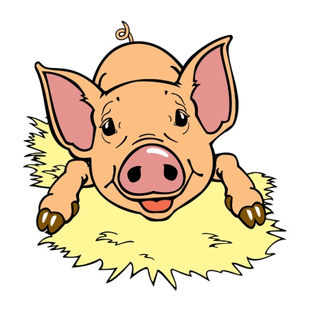 smiling one piglet isolated on white background Illustration