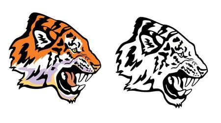 tigresa: cabeza de tigre vista de perfil aislado sobre fondo blanco Vectores