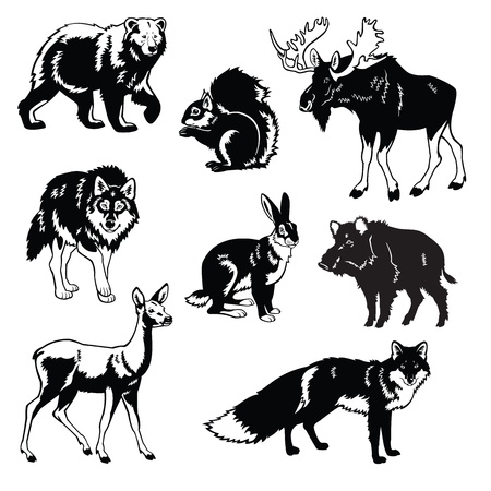 vector set of most popular forest animals,Eurasia beasts,black and white images isolated on white background Illustration