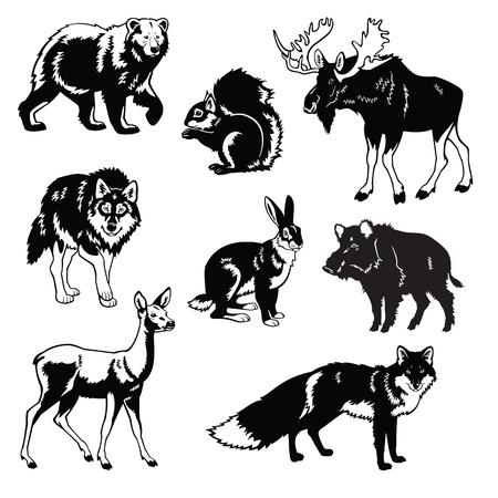 Vektor-Set der beliebtesten Tiere des Waldes, Eurasia Bestien, schwarz und wei� Bilder auf wei�em Hintergrund