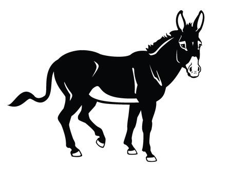 stående åsna, svartvit vektorbild, från sidan bild
