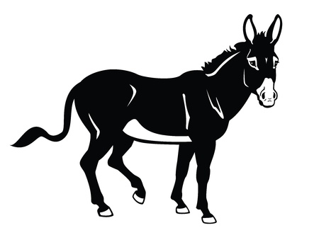standing donkey, black and white vector picture,side view image Vector