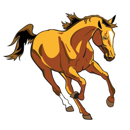 thoroughbred horse: running brown horse ,single vector picture isolared on white background,galloping stallion