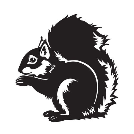 sitting Eurasian squirrel,forest animal,black and white vector picture isolated on white background,side view image